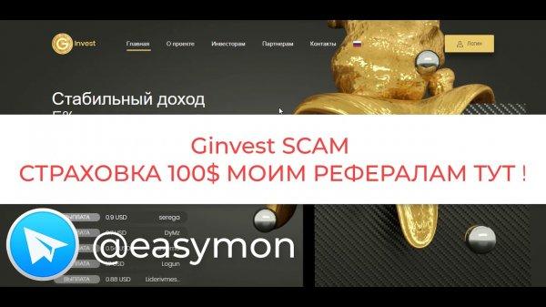 Страховка 100$. GINVEST Scam  - «Видео уроки - CSS»