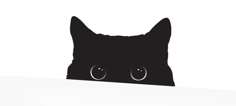 Кот атакует! Изучаем открытый стилер StormKitty - «Новости»